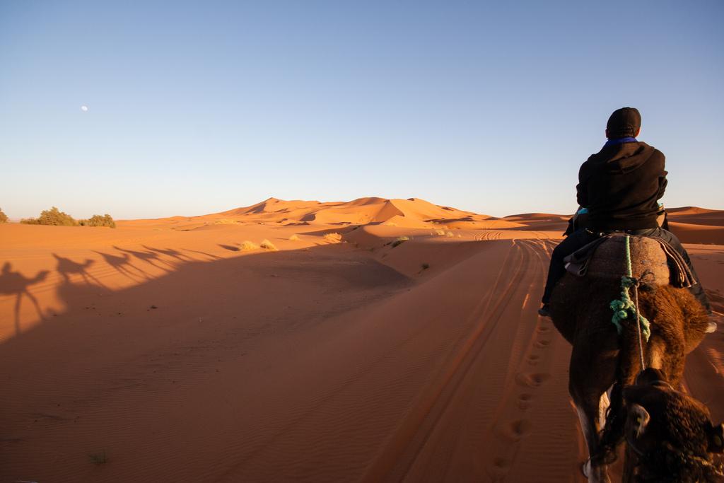 En route vers le campement de Merzouga, sur nos dromadaires.