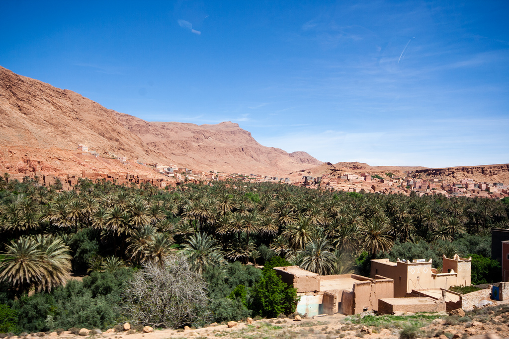 L'oasis, nichée au coeur du désert.