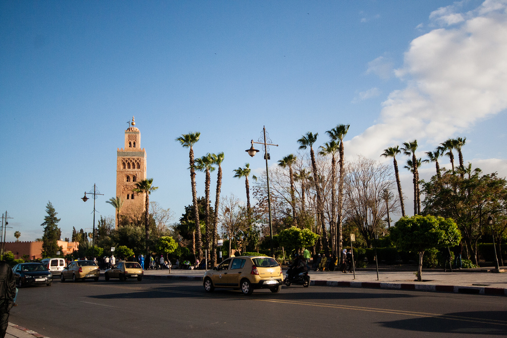 Mosquée et palmiers à Marrakech