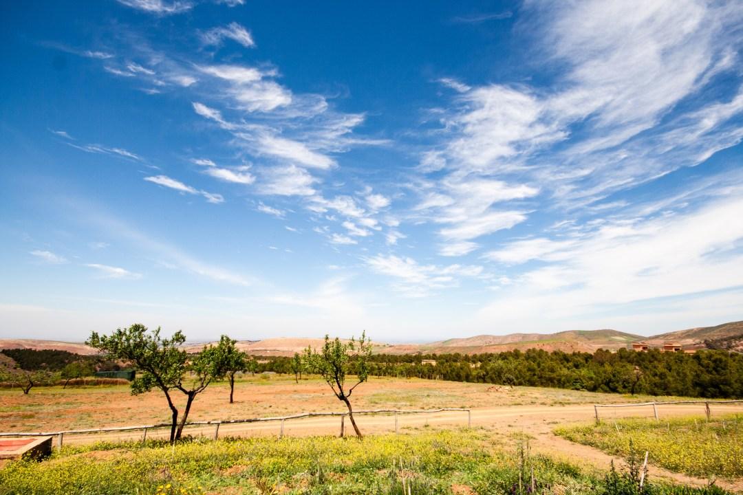 Beau paysage du lieu de l'accrobranche, sous un beau ciel bleu.