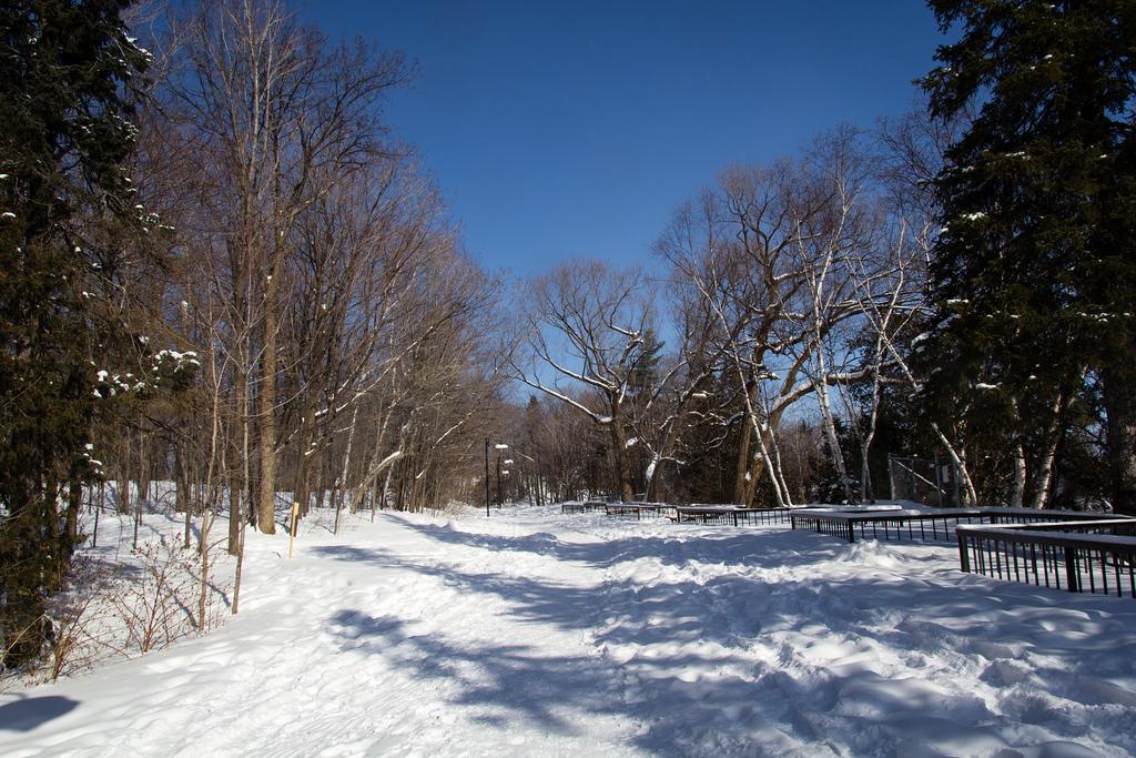 Parc de la chute de Montmorency sous la neige.