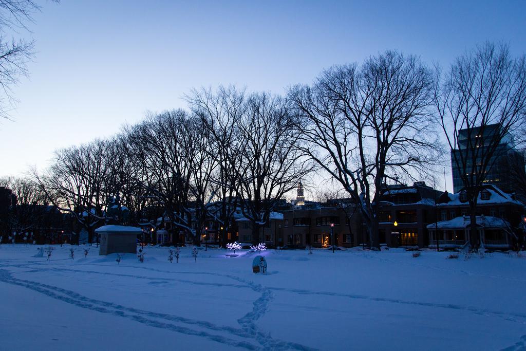 Québec City sous la neige, pendant l'heure bleue.