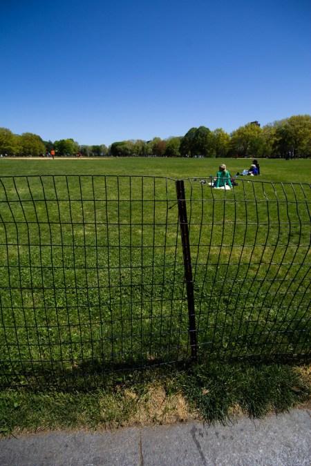 Posé sur l'herbe dans Central Park.