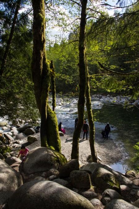 Bassin naturel dans La banlieue verdoyante de Vancouver City.