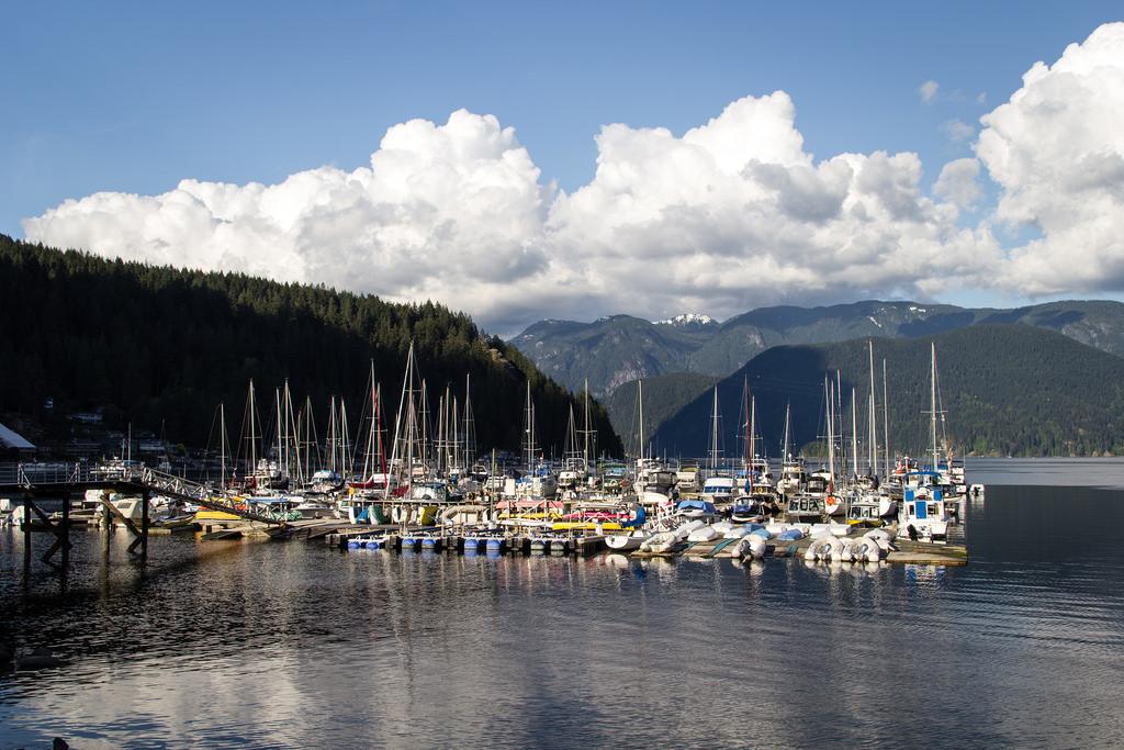 Bateaux amarrés au port de plaisance.