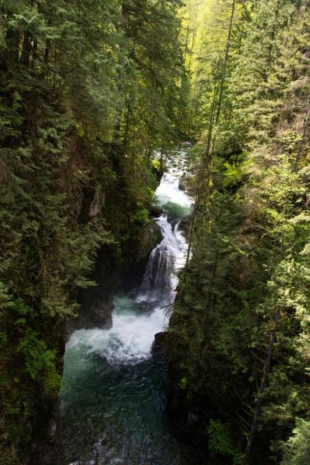 Cascade de La banlieue verdoyante de Vancouver City.