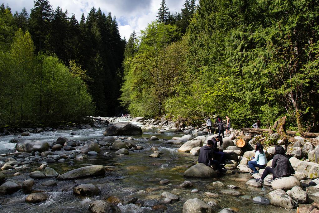 Cours d'eau dans La banlieue verdoyante de Vancouver City.
