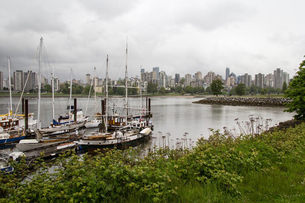 Port de plaisance et skyline en fond.