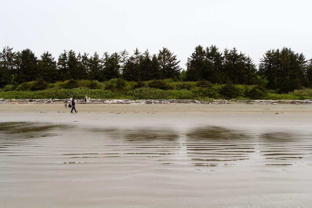 Promeneur sur la plage.