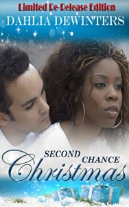 Book Cover: Second Chance Christmas - A Holiday Romance