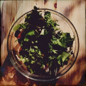 Eco Salad made from my vegetable garden.