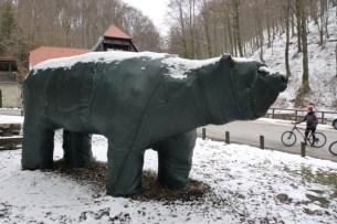 Medvednica = Bear Mountain