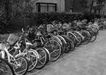 不用自転車は5台から、バイクは1台からOK