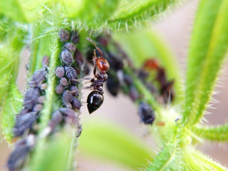 働き蟻の法則 波動営業学