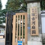 [東京散歩] 庭園はいいぞ。旧古河庭園に行ってみた(文京区駒込)