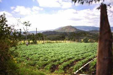 Estelí – El camino de Salto Estanzuela