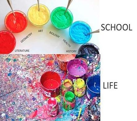 School vs Life