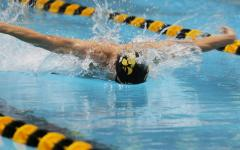 Sports Brief: Swimmers set school mark at Big Tens