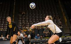 Volleyball Black & Gold Scrimmage