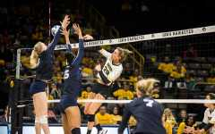 Volleyball falls flat in battle with Illinois