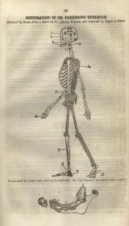 Webster murder pamphlet