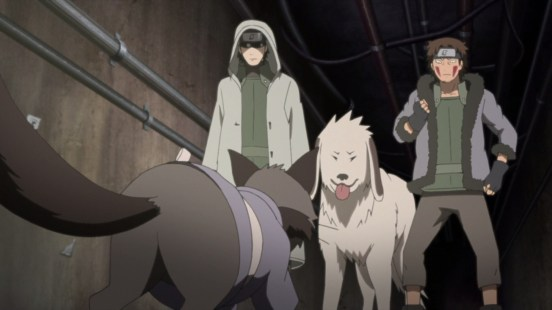 Shino Akamaru Kiba talk to cat