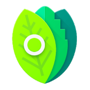 Minty Icons Pro v0.9.2 [Patched] APK 2
