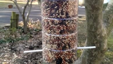 DIY Upcycled Bird Feeder 1