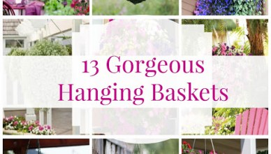Hanging Flower Basket Inspiration 12