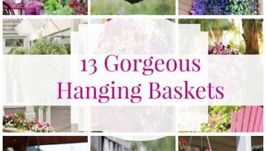 Hanging Flower Basket Inspiration 9