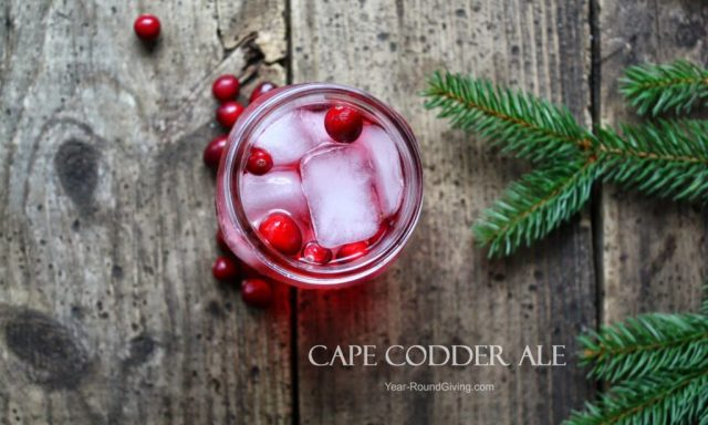 Cape Codder Ale Cocktail. A must have at my holiday cocktail party.