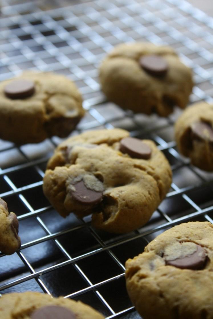 Soft Chocolate Chip Pumpkin Cookies