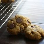 Chocolate Chip Pumpkin Cookies 1