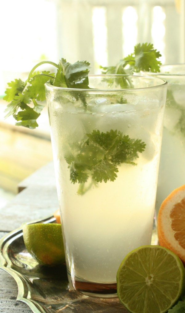 Upgrade that Gin and Tonic with Cilantro Grapefruit and a twist of Lime. Cilantro Grapefruit Gin and Tonic is a refreshing Summer Cocktail.
