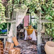 wedding venues in florida - Fiorelli Winery and Vineyard 4