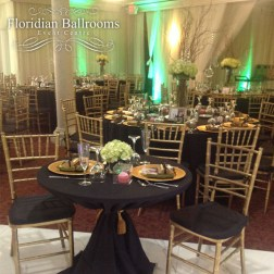 wedding venues in florida - Floridian Ballrooms 4