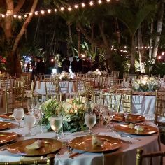 wedding venues in florida - bamboogallery 6
