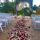 wedding venues in florida - living_sculpture_sanctuary 6
