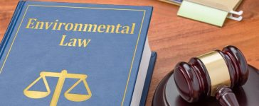 A law book with a gavel - Environmental law (Shutterstock/Zerbor)
