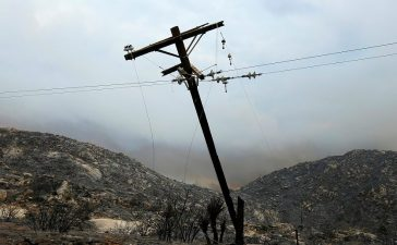 Utility workers begin work repairing power and data lines after a wildfire near Potrero, California, U.S. June 21, 2016. REUTERS/Mike Blake