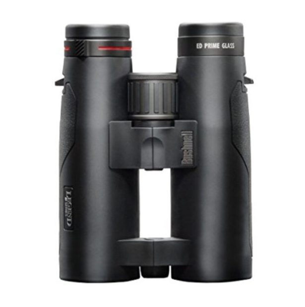 Normally $289, these Bushnell binoculars are 43 percent off today (Photo via Amazon)
