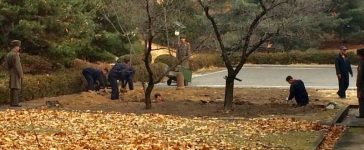North Korean soldiers dig a trench and plant trees in the area where, on November 13, a defector ran across the border at the Demilitarized Zone (DMZ) dividing North Korea and South Korea November 22, 2017. Handout via REUTERS