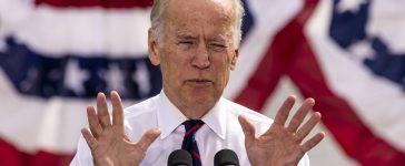 Vice President Joe Biden campaigns. (Shutterstock/Joseph Sohm)