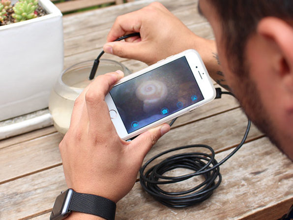 Normally $50, this endoscopic camera is 40 percent off at The Daily Caller Shop