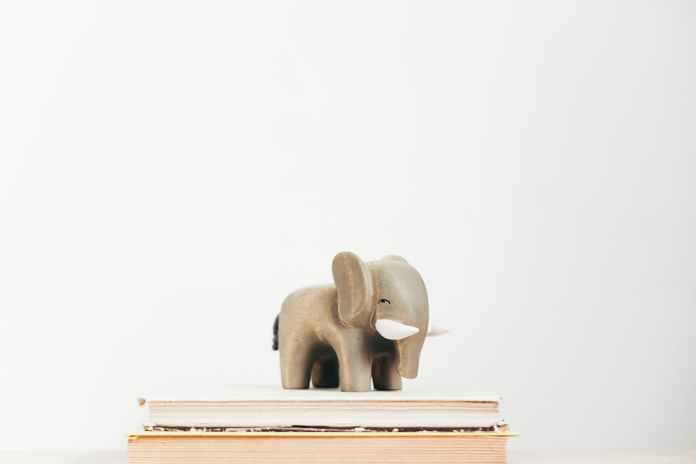 animal figurine on books