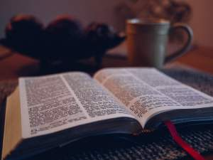 The Bible Is God's Word