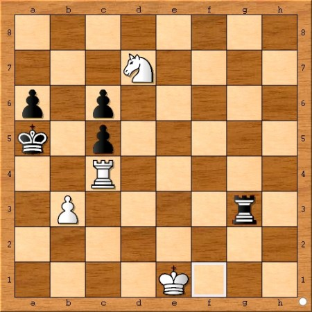 Position after Viswanathan Anand plays 71... Rg3.