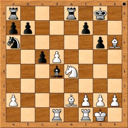 The position after Viswanathan Anand plays 20. Nxe4.
