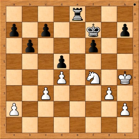 Position after 29. Nf4