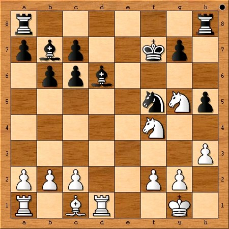 The final position of Game 9 from the 2014 Fide World Chess Championship Match between Magnus Carlsen and Viswanathan Anand.